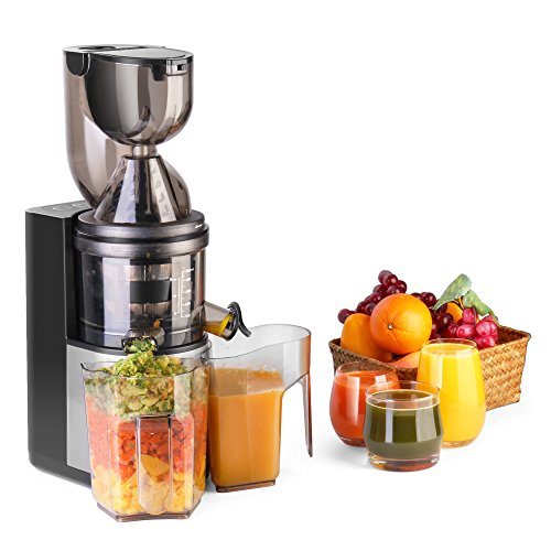 Flexzion Masticating Juicer Machine - Slow Cold Press Juice Extractor Maker Electric Juicing Vertical Stand for Fruit, Vegetable, (Small Fruit Juicer)