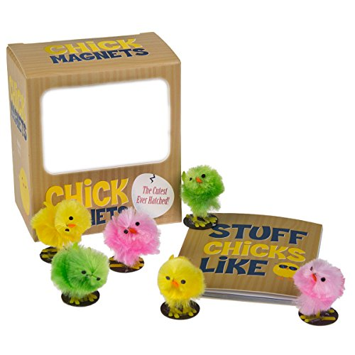 Chick Magnet - Chick Magnets: The Cutest Ever Hatched! (Miniature Editions)