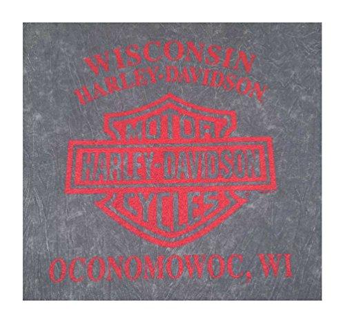 Harley-Davidson Men's End of the Road Short Sleeve Washed Gray T-Shirt 5J31-HB7J