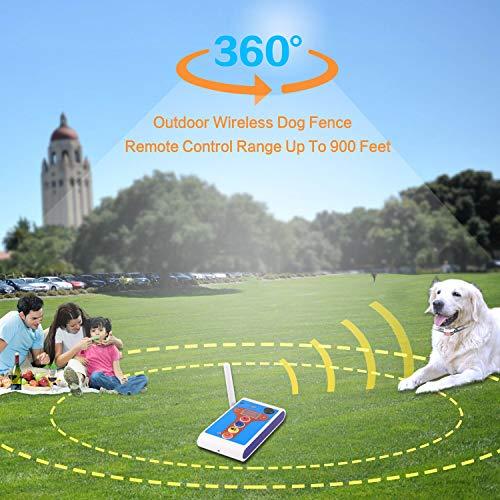 Buy rated dog training shock collar