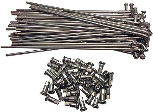 Plated Steel Rim - 21