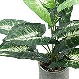 "Velener 15"" Artificial Potted Green Leaf Plant in"