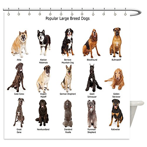 Vanfan Shower Curtains a group of fifteen common large breed dogs together 288423206 For (Common White Girl Halloween Costume Ideas)