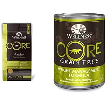 Amazon Com Wellness Well Pack Core Weight Management