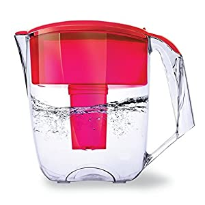 Ecosoft 10 Cup Capacity Water Filter Pitcher Jug w/ 1 Free Filter Cartridge, Red