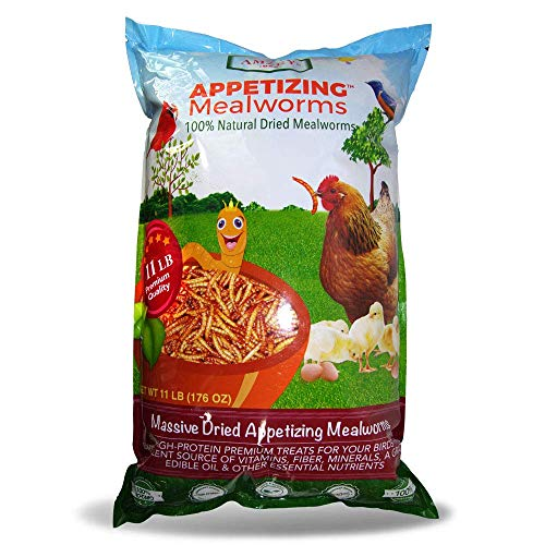 Appetizing Mealworms 11lbs-100% Non-GMO Dried Mealworms - High-Protein Meal Worm Treats -Perfect for Your Chickens,Ducks,Wild Birds,Turtles,Hamsters,Fish,and Hedgehogs