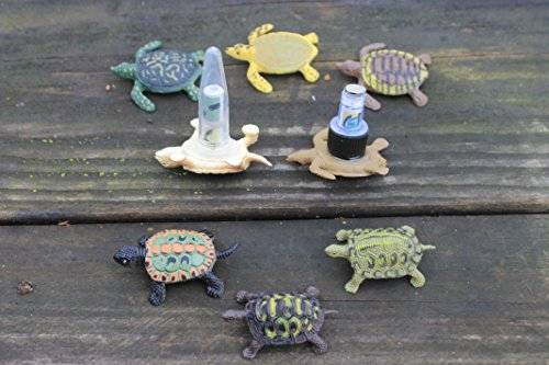 - Two (2) Baby Turtle Geocache Containers