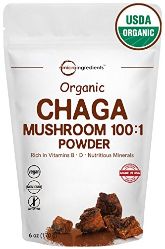Sustainably Maine Grown, Wild Harvest Organic Chaga Mushroom 100:1 Powder, 6 Ounce, Powerful Immune System & Energy Booster, Best Superfoods for Beverage and Smoothie, Non-GMO and Vegan Friendly ()