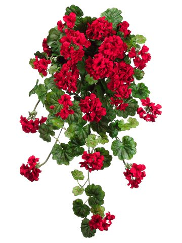 FBG925-RE-47-in-WR-Geranium-Hg-BuX14-Red-Pack-of-4