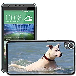 Hot Style Cell Phone PC Hard Case Cover // M00116421 Dog Sea Swim Jump Ocean Water // HTC Desire 820