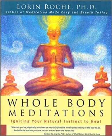 Book Whole Body Meditations : Igniting Your Natural Instinct to Heal