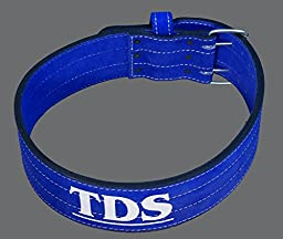 TDS Power Lifting Leather Belt Small