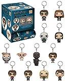 Funko Pocket Pop Keychain Harry Potter 21139 (1 Random Figure)