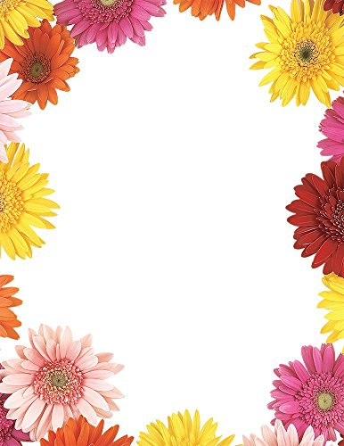Great Papers! Gerbera Daisies Letterhead, 80 Count, 8.5