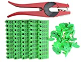 WGCD 100 PCS 1-100 Number Plastic Livestock Ear Tag Animal Tag and 1 PCS Ear Tag Applicator for Goat Sheep (Green)