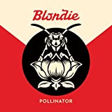 Image of Pollinator