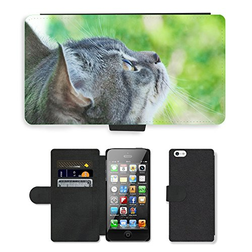 Just Phone Cases PU Leather Flip Custodia Protettiva Case Cover per // M00127853 Eye animaux mignons de Cat Cat Mme Pet // Apple iPhone 5 5S 5G