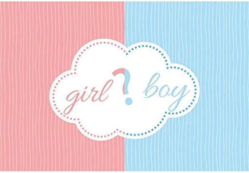 Amazon Com Dorcev Girl Or Boy Photography Backdrop Gender Reveal Party Baby Shower Background Pink Stripes Blue Stripes Gender Reveal Party Banner Wallpaper Baby Shower Photo Studio Props Camera Photo