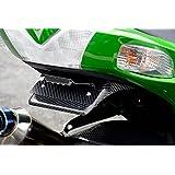 マジカルレーシング(MAGICAL RACING) フェンダーレスキット FRP 黒 ZX-14R (12-14) 001-ZX1412-9101