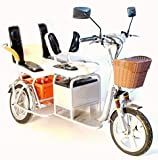 Trikaroo Boomer Silver Two Seater Mobility Scooter