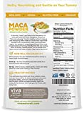 Viva Naturals Organic Maca Powder, Gelatinized for Enhanced Bioavailability, Non-GMO, 1lb Bag