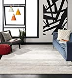 Safavieh Adirondack Collection ADR113B Ivory and Silver Modern Abstract Area Rug (3' x 5')
