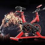 LSYOA-Magnetico-Fitness-Bike-Cyclette-Interno-Verticale-Spin-Bike-con-Display-LCD-Regolabile-Braccioli-e-Resistenza-Attrezzo-SportivoBlack