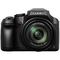 Panasonic Lumix Bridge Lumix Hi-Zoom 4K Point and Shoot Travel Camera, Black (DC-FZ80GN-K)