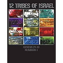 Hebrew Israelite Books: Unique Composition Notebook for King James 1611 and Apocrypha Study, Children, Boys, Girls and Adults, Men and Women (Prayer Book, Bible Class, Diary, Journal, Gift) (College Rule, 8.5 x 11 inches) 12 Tribes of Israel