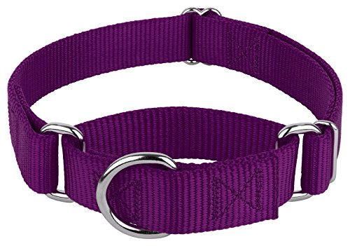(Country Brook Design | Martingale Heavyduty Nylon Dog Collar - Purple - Medium)