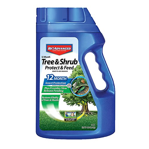 - Bayer Advanced 701900 12 Month Tree and Shrub Protect and Feed Granules, 4-Pound (NY Formula)