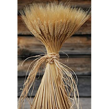 Festive & Party Supplies Brilliant Large Wheat Yellow Natural Wheat Sheaf Bundle Premium Diy Home Kitchen Table Wedding Centerpieces Decoration