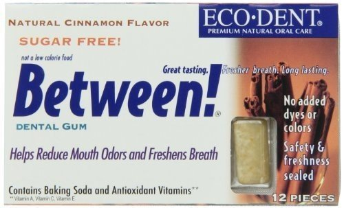 ECO-DENT BETWEEN DENTAL GUM,CINN, 12 CT by Eco-Dent (Image #1)