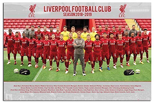 Liverpool FC 2018-2019 Team Photo Poster Maxi - 91.5 x 61cms (36 x 24 Inches)