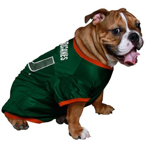 - NCAA Miami Hurricanes Green Mesh Dog Jersey (X-Small)
