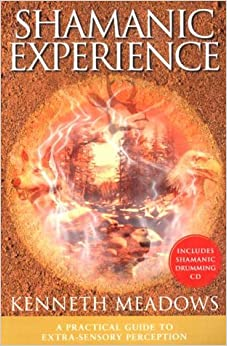 Book Shamanic Experience: A Practical Guide to Contemporary Shamanism