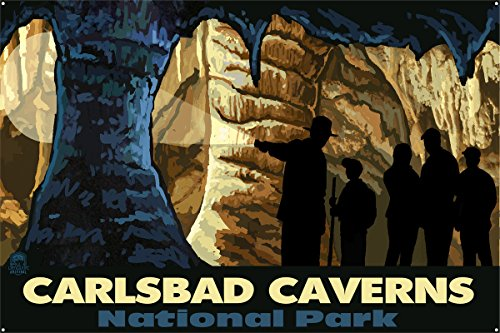 Carlsbad Caverns Cave Tour New Mexico Metal Art Print by Paul A. Lanquist (24