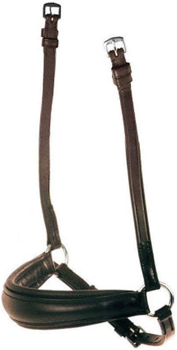 Kurz Collegiate Stollen Sattelgurt