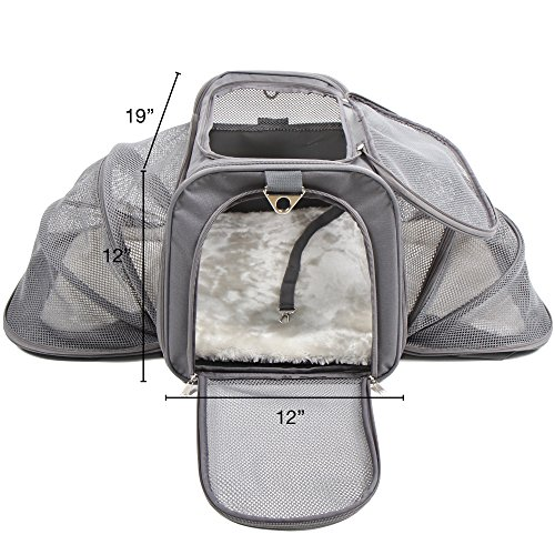 Large Dog Carriers For Airplanes