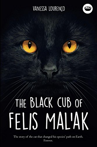 The black cub of Felis Mal ak