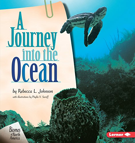 (A Journey into the Ocean (Biomes of North America))