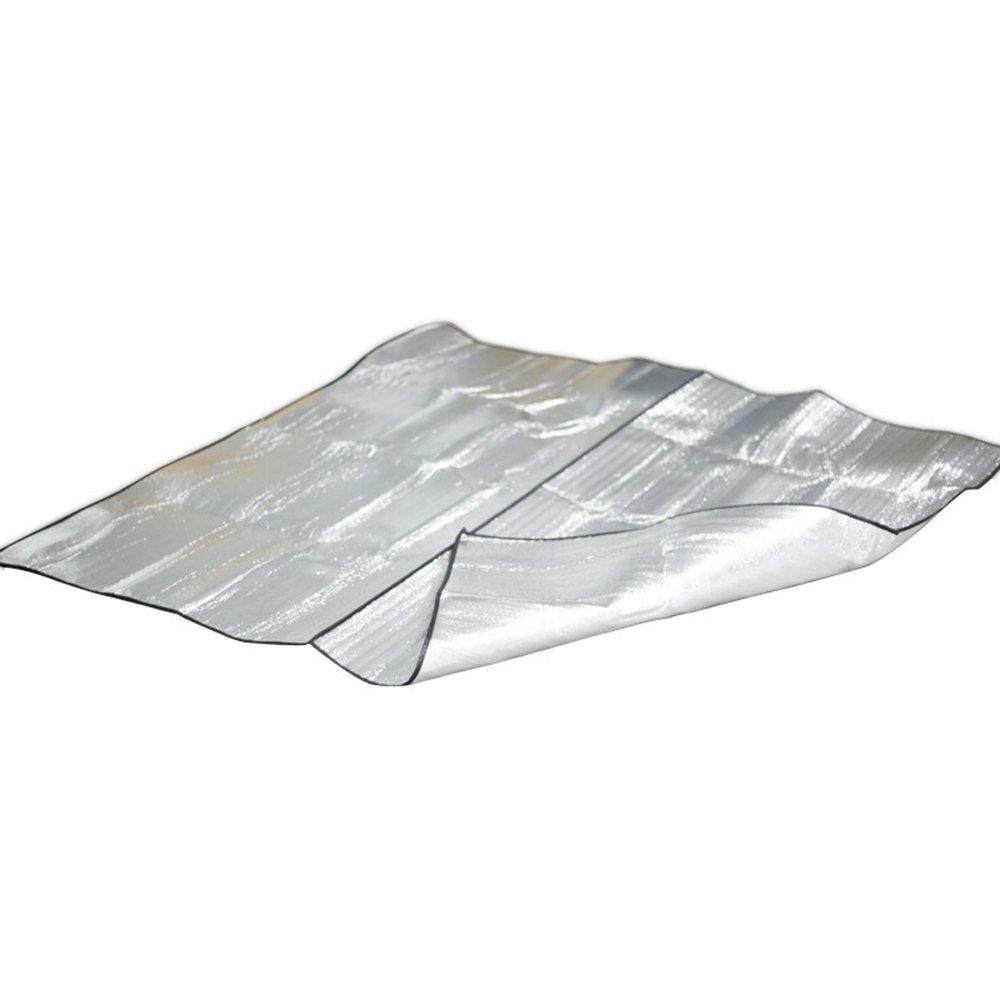 Moistureproofマット/アルミニウムフィルムマット/アウトドア両面テントマットピクニックマット/ポータブルストレージマット(200 x 200 cm) B07F27N9WM