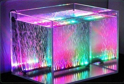 Xcellent Global Luz de 12 LED RGB multicolor LED para acuario Lámpara de burbujas resistente al agua con flash lento Flash 31 CM con enchufe europeo LD080E: ...