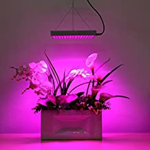 Amzdeal Plant Grow Light LED Panel Hydroponic Lamp for Indoor Flower Vegetable Growing, Red Blue 14W