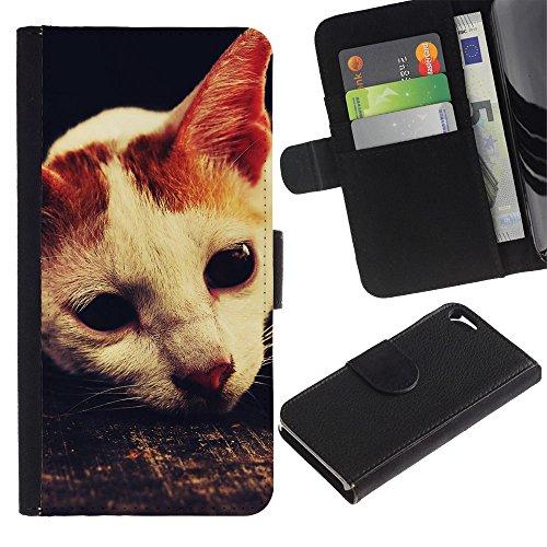 OMEGA Case / Apple Iphone 5 / 5S / laperm American shorthair cat singapura / Cuir PU Portefeuille Coverture Shell Armure Coque Coq Cas Etui Housse Case Cover Wallet Credit Card