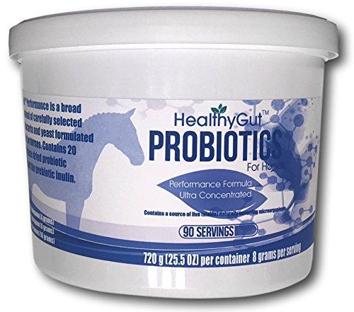 HealthyGut Performance Probiotics For Horses (90) by Equa Holistics (Image #1)