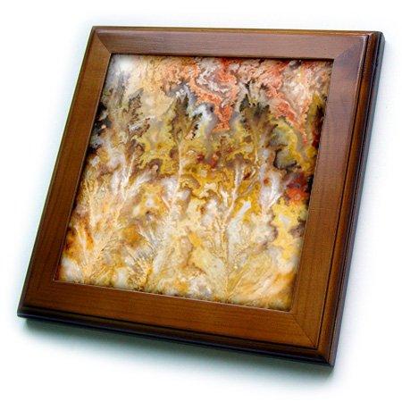3dRose ft_93711_1 Oregon. Graveyard Point Plume Agate Stone-US38 BJA0735-Jaynes Gallery-Framed Tile, 8 by 8-Inch