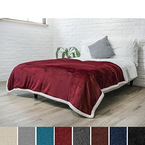 Premium Sherpa Throw Blanket by Pavilia | Super Soft, Cozy, Lightweight Microfiber, Reversible, All Season for Couch or Bed (Wine, 60 x 80 Inches) (Sherpa Blanket)