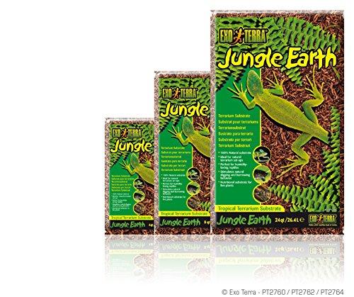 Exo Terra Jungle Earth, 8-Quart