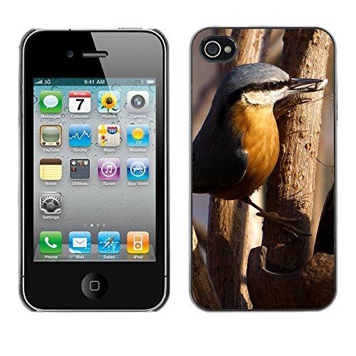 Premio Sottile Slim Cassa Custodia Case Cover Shell // F00019723 oiseau Foraging // Apple iPhone 4 4S 4G